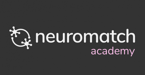 Announcing Neuromatch Academy courses for 2021!