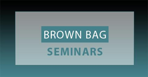 Brown Bag Seminar: Seyed Babak RezaeeDaryakenari (Sabancı University)