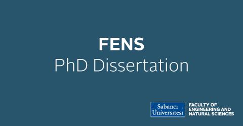 PhD Dissertation: Ebru Demir