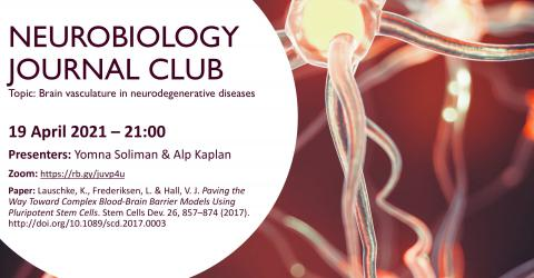 Neurobiology Journal Club