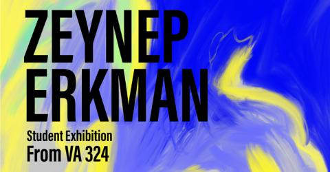 Zeynep Erkman Student Exhibition From VA 324